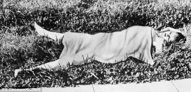 The rotting corpse of Elizabeth Short as photographed by the police. Photo taken from www.dailymail.co.uk